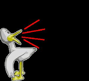 ducks-quack